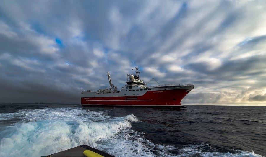 Neptune Energy announces completion of seismic survey offshore Egypt